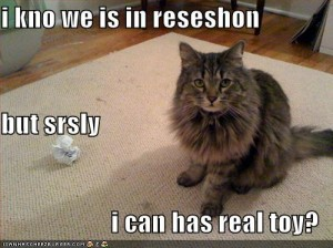 funny-pictures-cat-paper-ball-recession