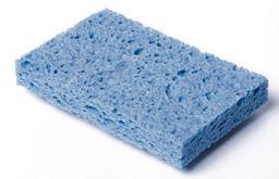 sponge0707