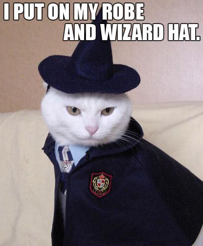 wizard-lolcat