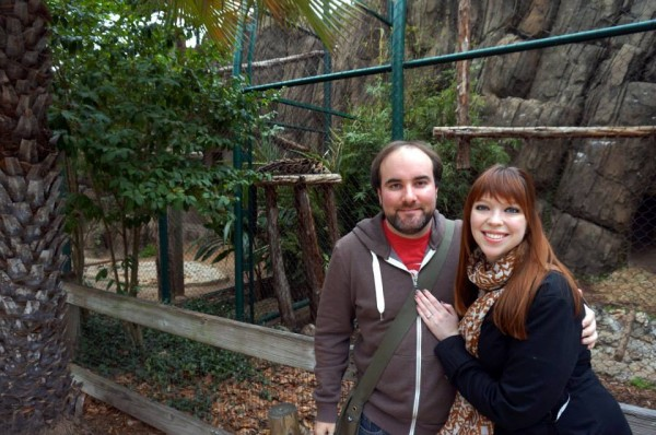 engaged at the Houston Zoo!